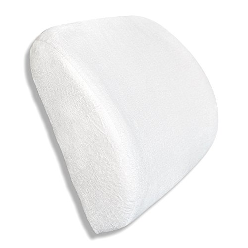 Everrelief 174 Lumbar Support Pillow Good For Your Back