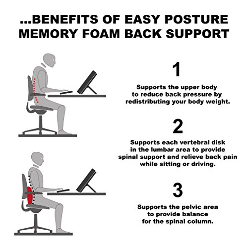 Easy Postur Lumbar Support Cushion Good For Your Back